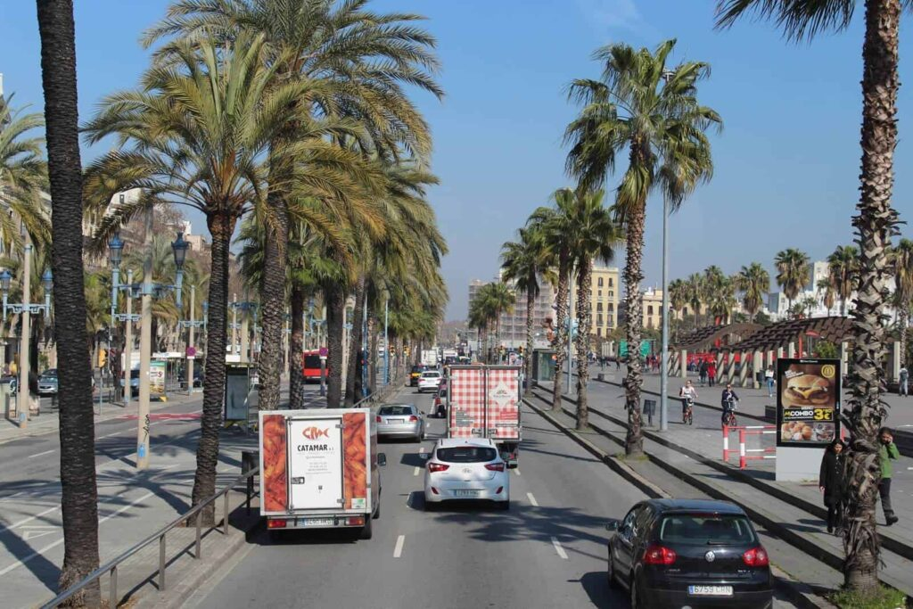 Barcelona Bus Turistic View
