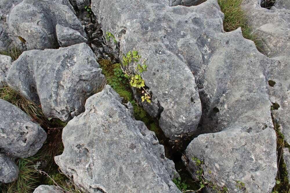 Ther Burren karst landscape