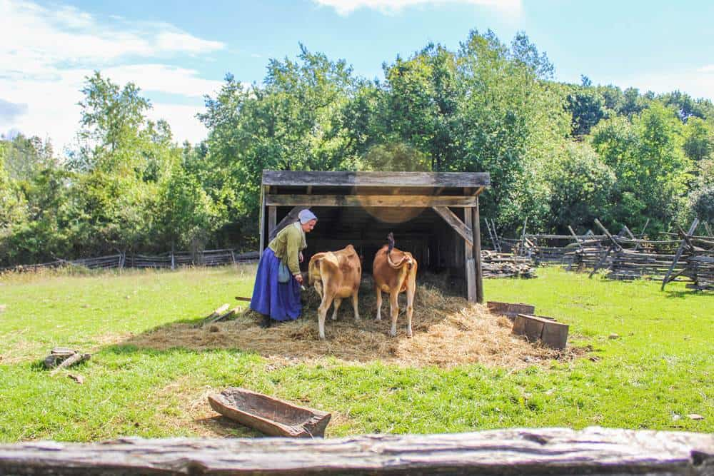 Visit the Genesee Country Village and museum is the largest living history museum in New York state.