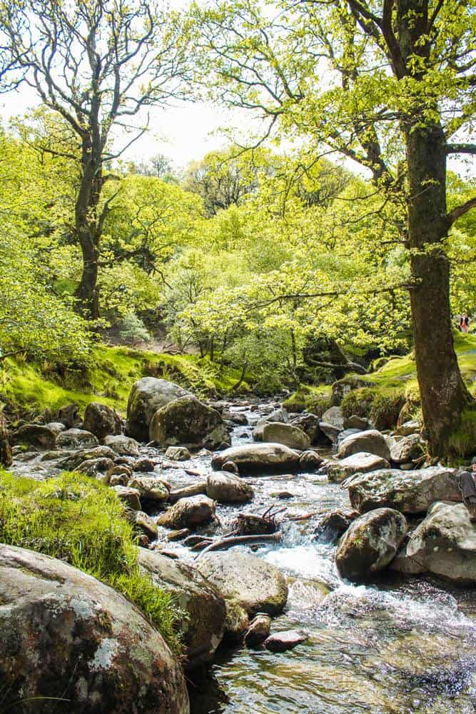 Wicklow mountains streams