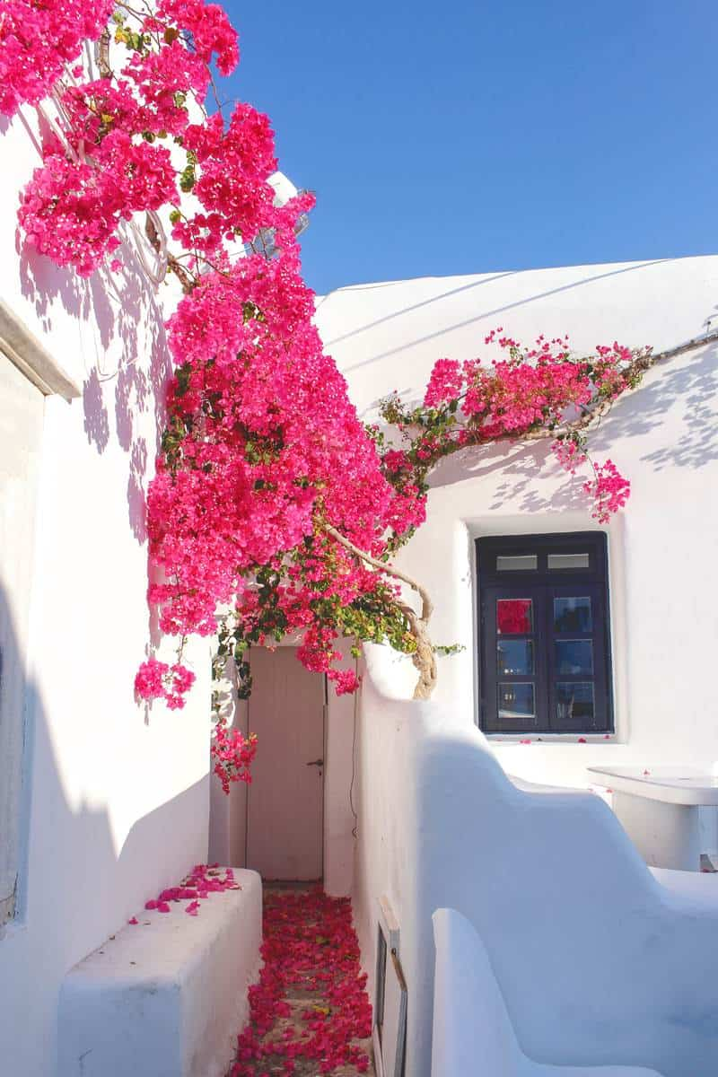 Mykonos, couple travel to Greece