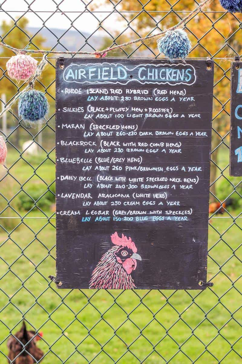 Airfield Estate Farm