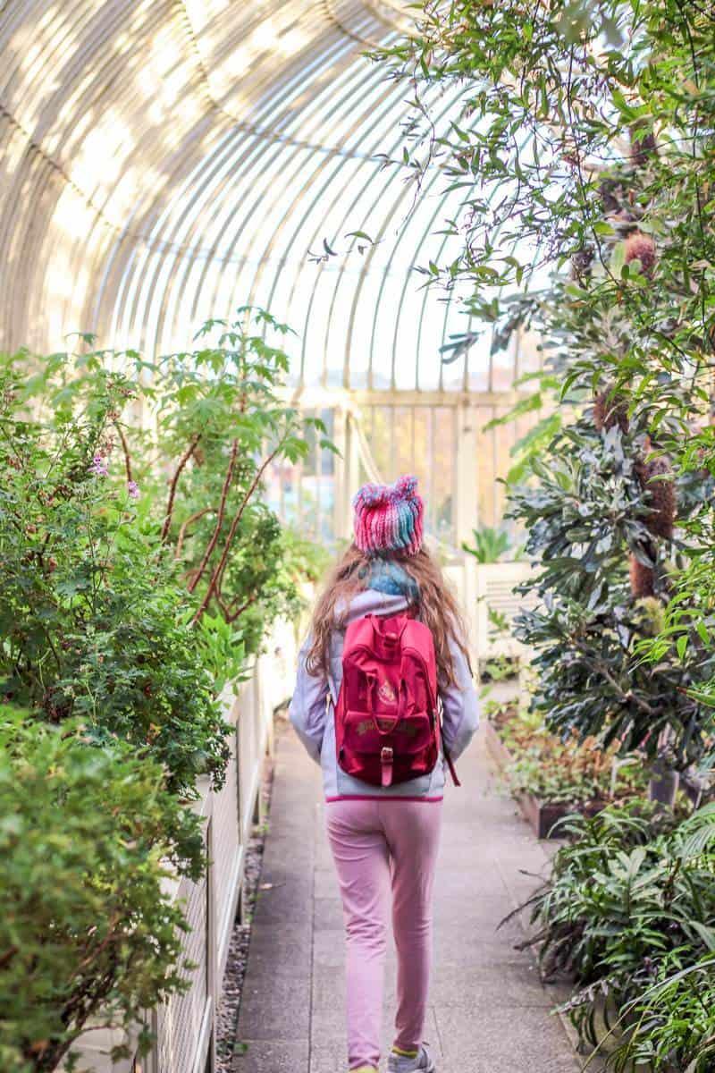 Glasshouse at The National Botanic Gardens of Ireland