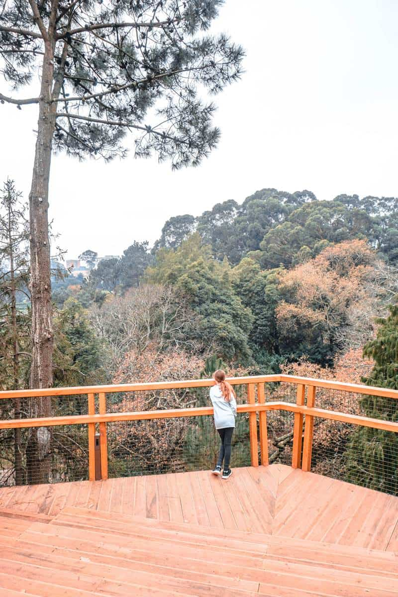 Serralves treetop walk